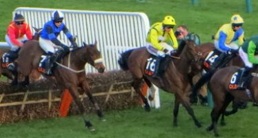 Best Matched Betting Offers For Cheltenham Festival